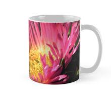 Iceplant mug