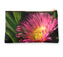 Iceplant pouch