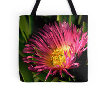 Iceplant tote