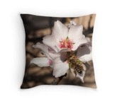 Apricot bee pillow