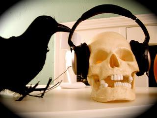 Goti crow skull