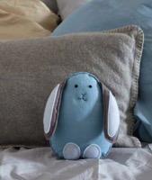 Supercraft bunny