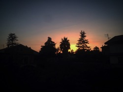 A Sicilian Sunset