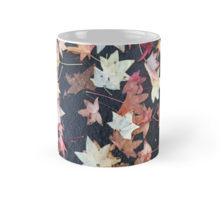 fall-leaves-2-mug