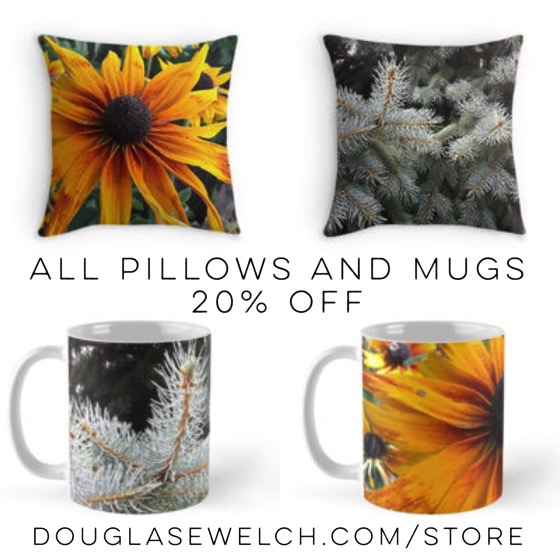 All Pillows and Mugs 20% Off Today. 180 styles to choose from at DouglasEWelch.com/store #pillows #mugs #home #sale #photography #nature #flowers #outdoors #products