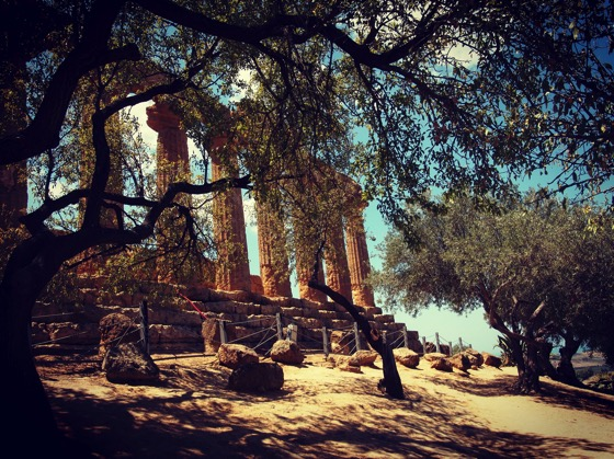 Temple with Olive Trees via Instagram [Photo]