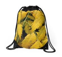 wisteria-drawstring