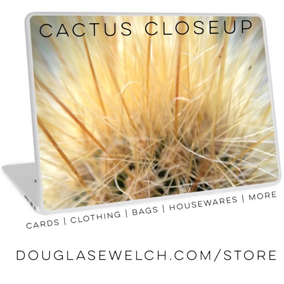 Cactus Closeup Laptop Skin and much more! DouglasEWelch.com/store #technology #clothing #housewares #home #nature #cactus #succulent #arts #crafts