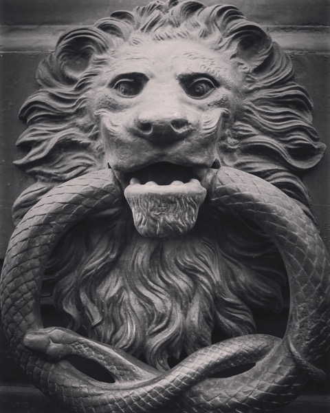 Door knocker, Catania, Sicily, Italy #architecture #door #art #sculpture #bw #blackandwhite #blackandwhitephotography #lion #snake
