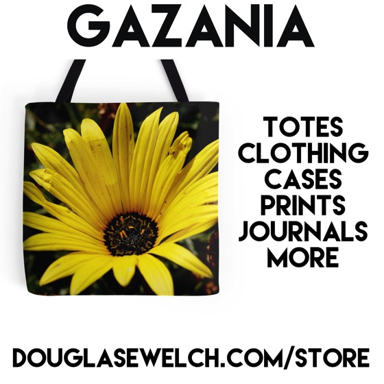 Buy this Gazania Tote and much more at DouglasEWelch.com/store #flowers #garden #plants #gazania #products #totes #bags #clothing #technology #arts #crafts