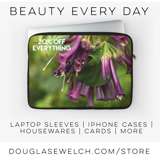 Laptop Sleeves and much tmore! Exclusively from DouglasEWelch.com/store #flowers #products #garden #technology #housewares #home #clothing #arts #crafts #cards #prints