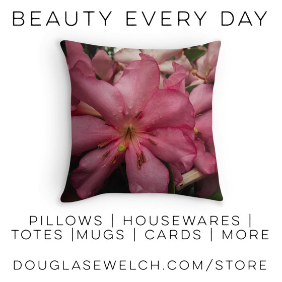 Pink Rhododendron Pillows and Much More! #flowers #garden #housewares #decor #cards #mugs #prints #products #shopping #gift
