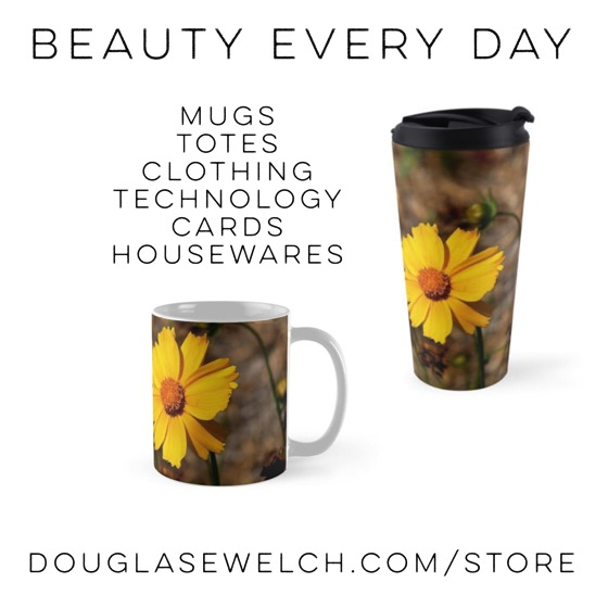 California Sunflower mugs and much more. Over 180 designs and 26 products for each design. Shop now at DouglasEWelch.com/store #gift #home#housewares #iphone #technology#clothing #cards #greetingcards #stickers