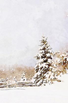 Winter=sentinal