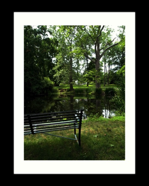 By The Pond Art Prints, Cards, Housewares and More! [Store]