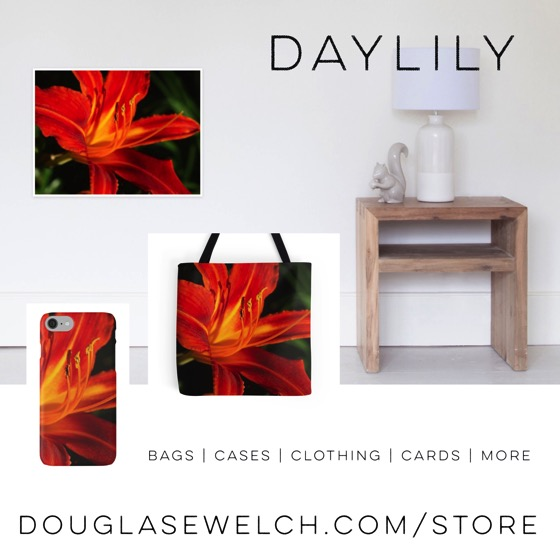 A Bit of Daylily Spring - Cases, Totes, Cards and More! - DouglasEWelch.com/store #flowers #nature #garden #daylily #outdoors #products #forsale #cards #cases #clothing #home #house wares