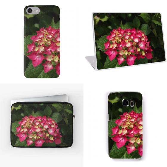 Get these Hydrangea iPhone/Samsung cases, laptop skins and sleeves — and much more — from Douglas E. Welch
