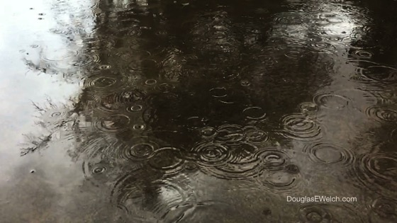 Los Angeles Rain in Slow Motion [Video]