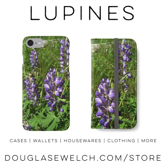 Lupines on Mt. Humphrey, Arizona #flowers #nature #plants #outdoors #products #iphone #cases #clothing #photography #stationary #cards #journals #home #housewares