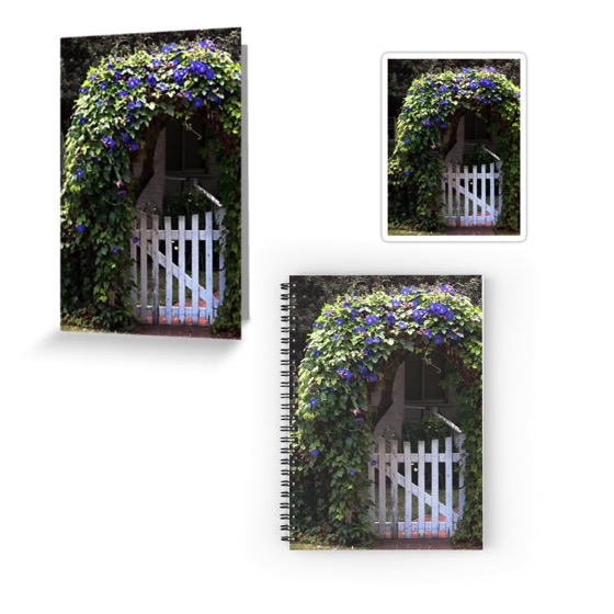 Morning Glory Gate Cards, Stickers, Notebooks and More!