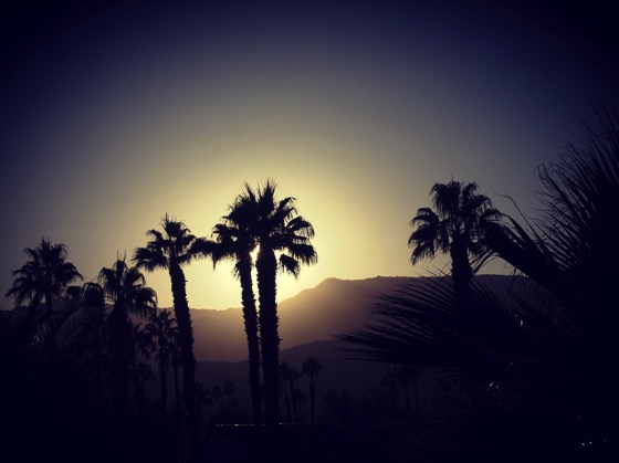Palm Desert Sunset [Photo]