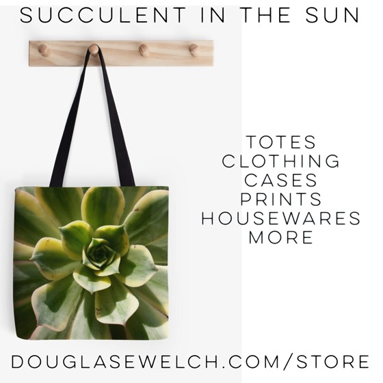 Gift these Succulent in the Sun Tote and much more. #bags #totes #clothing #cases #prints #succulent #plants #nature #garden #product #forsale #buy