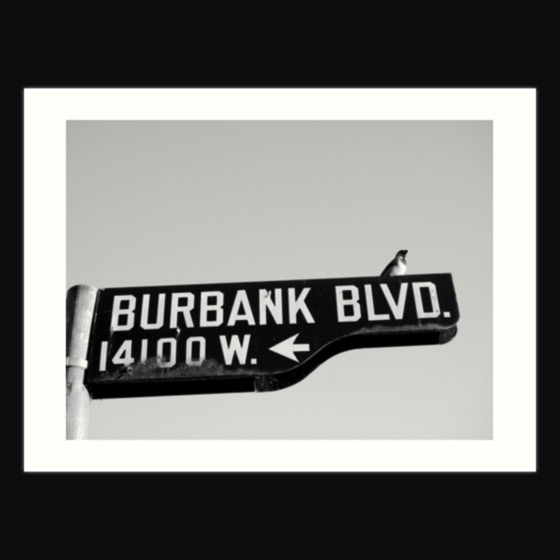 Dress up your rooms with this Burbank and Bird Art Print and much more!
