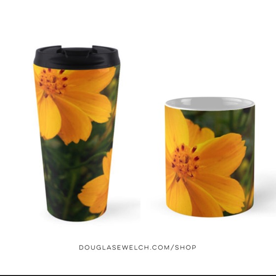 Brighten up your mornings with these Golden Coreopsis Mugs and More!