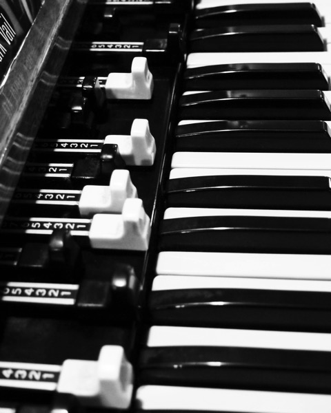 Hammond B3 in Black and White