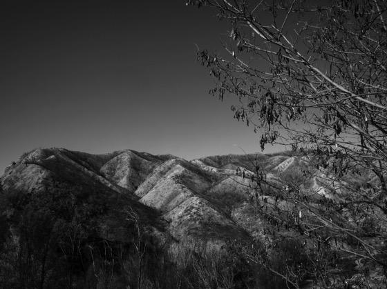 Placerita Canyon 6
