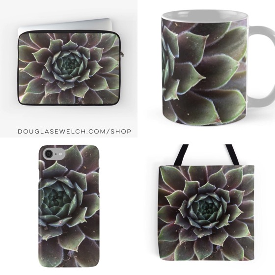 Sempervivum Cases, Sleeves, Totes, Mugs and More!