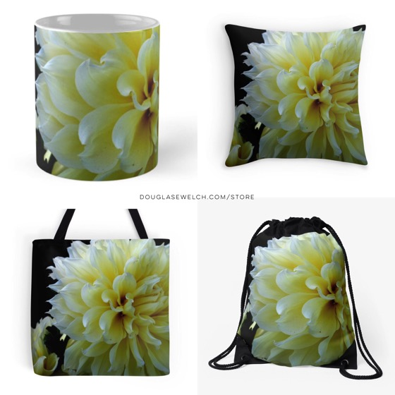 Yellow dahlia products