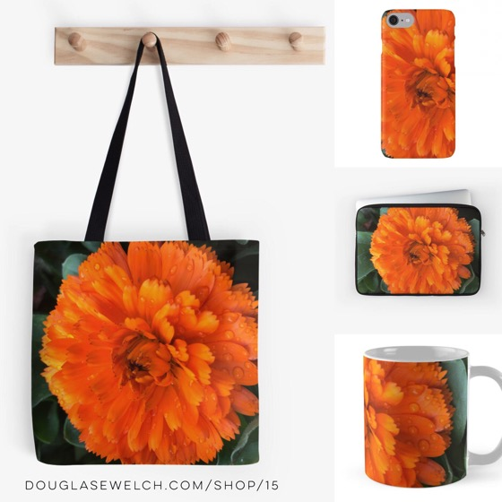 """Buy and gift these """"Marigold with Raindrops"""" Totes, iPhone Cases, Laptop Sleeves and More!"""