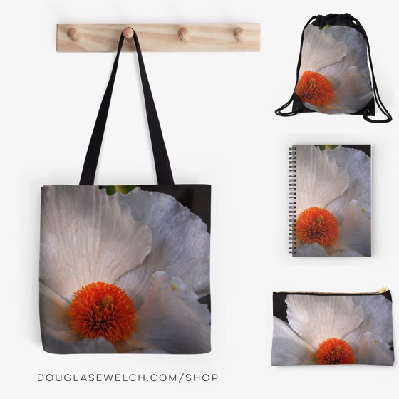 Matilija Poppy Totes, Bags, Notebooks and much more!