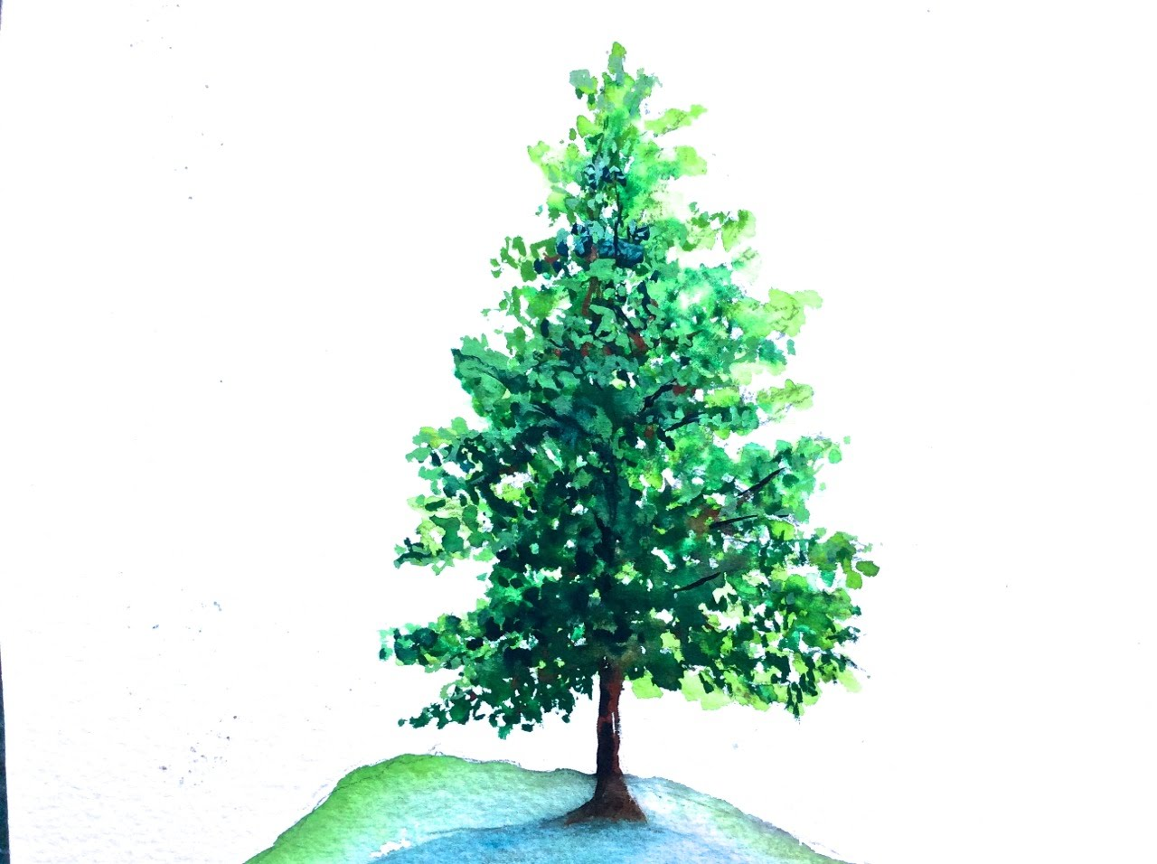 On YouTube: Tutorial how to paint a Pine Tree with Watercolor, fast and easy