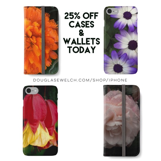 25% off All Cases and Wallets Today!