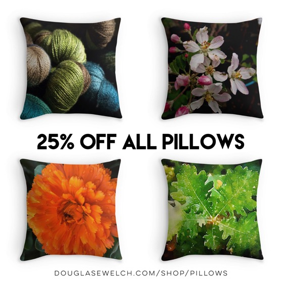 25% OFF Pillows Today! - Dress up your home on a discount today with these pillows and many more!
