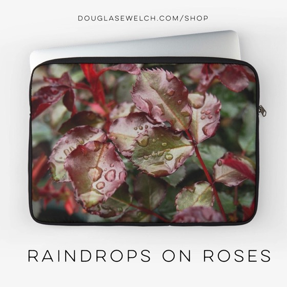"Are ""Raindrops on Roses"" a few of your favorite things? Check out these laptop sleeves, iPhone cases, tops, Totes and much more!"