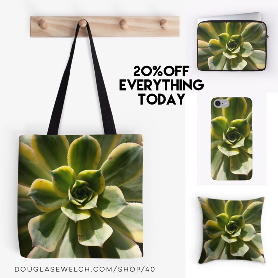 20% Off Everything Today! – Striking Succulents Decorate These Totes, iPhone Cases, Pillow and Much More!