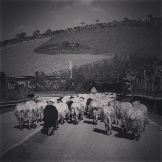 On the road to Agira, Sicily