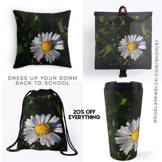 "20% OFF - Back to School /Dress Up Your Dorm - ""Chamomile Flower"" Scarves, Bags, Mugs, Pillows and Much More!"