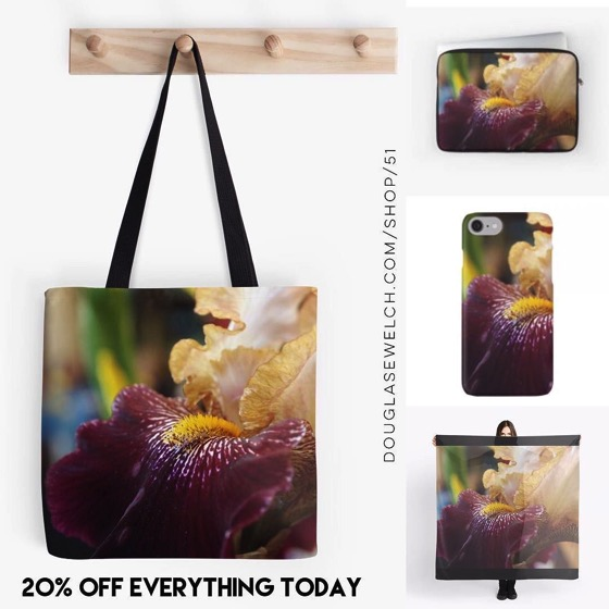 20% OFF Everything Today! - Abstract Iris Scarves, Smartphone Cases, Totes and Much More!