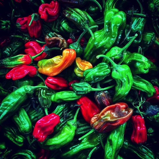 More Chilis at Sherman Oaks Farmers Market