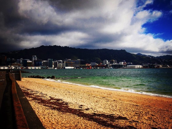 Wellington, New Zealand seen from beach in Oriental Parade via Instagram
