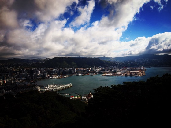 Wellington, New Zealand seen from Mount Victoria Overlook