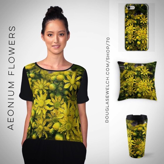 Get these Aeonium Flowers on Tops, Totes, Smartphone Cases and More!