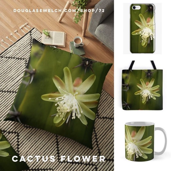 Cactus Flower Pillows, Totes, Smartphone Cases and More!