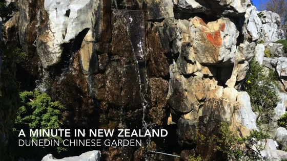 A Minute in New Zealand - Dunedin Chinese Garden [Video] (1 min)
