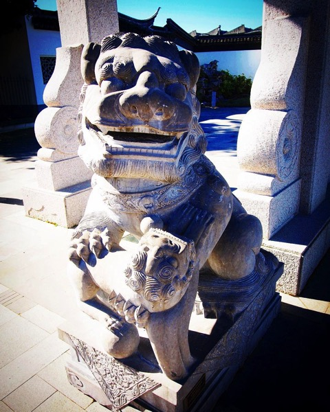 Lion Sculpture, Dunedin Chinese Garden via Instagram