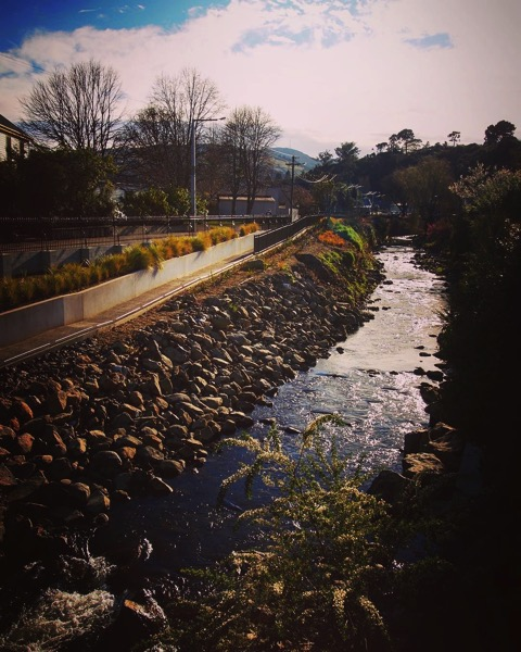 Leith River as it runs through the center of the University of Otago via Instagram